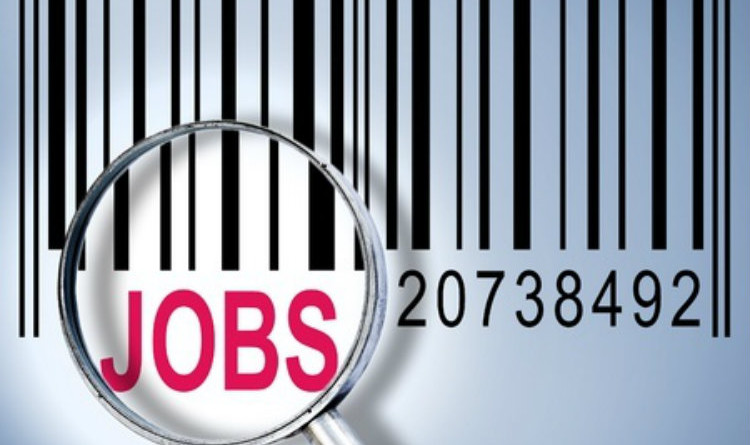 Look for Jobs film